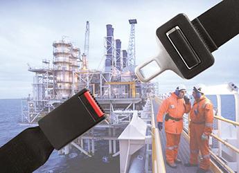 Completing a Functional Safety Management compliance fingerprint